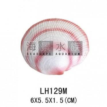 鱼缸水族箱装饰造景  中款红色真海洋贝壳 LH129M 水族装饰品